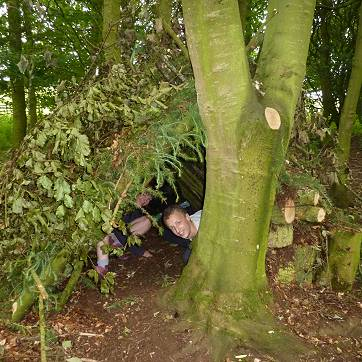 Building shelters in the wood